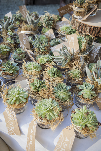 Rustic-barn-outdoor-wedding-succulent-decor-for-guests