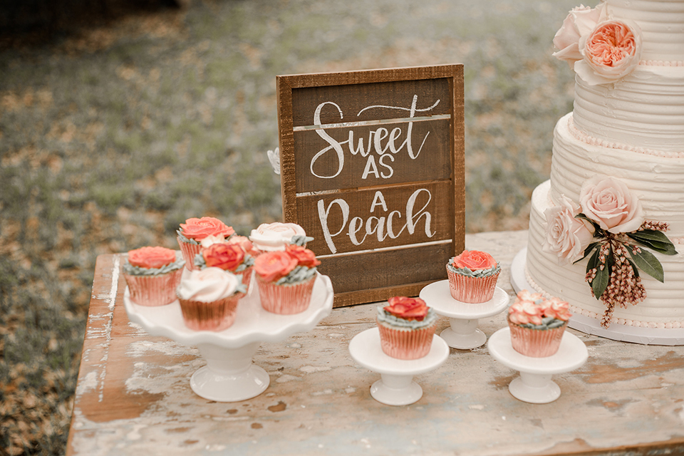 Texas-peaches-and-cream-wedding-shoot-at-carola-horse-ranch-wedding-dessert-table