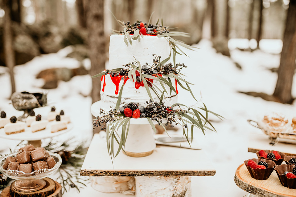 Arizona-Elopement-Shoot-cake-with-a-natural-frosted-detail-and-berries